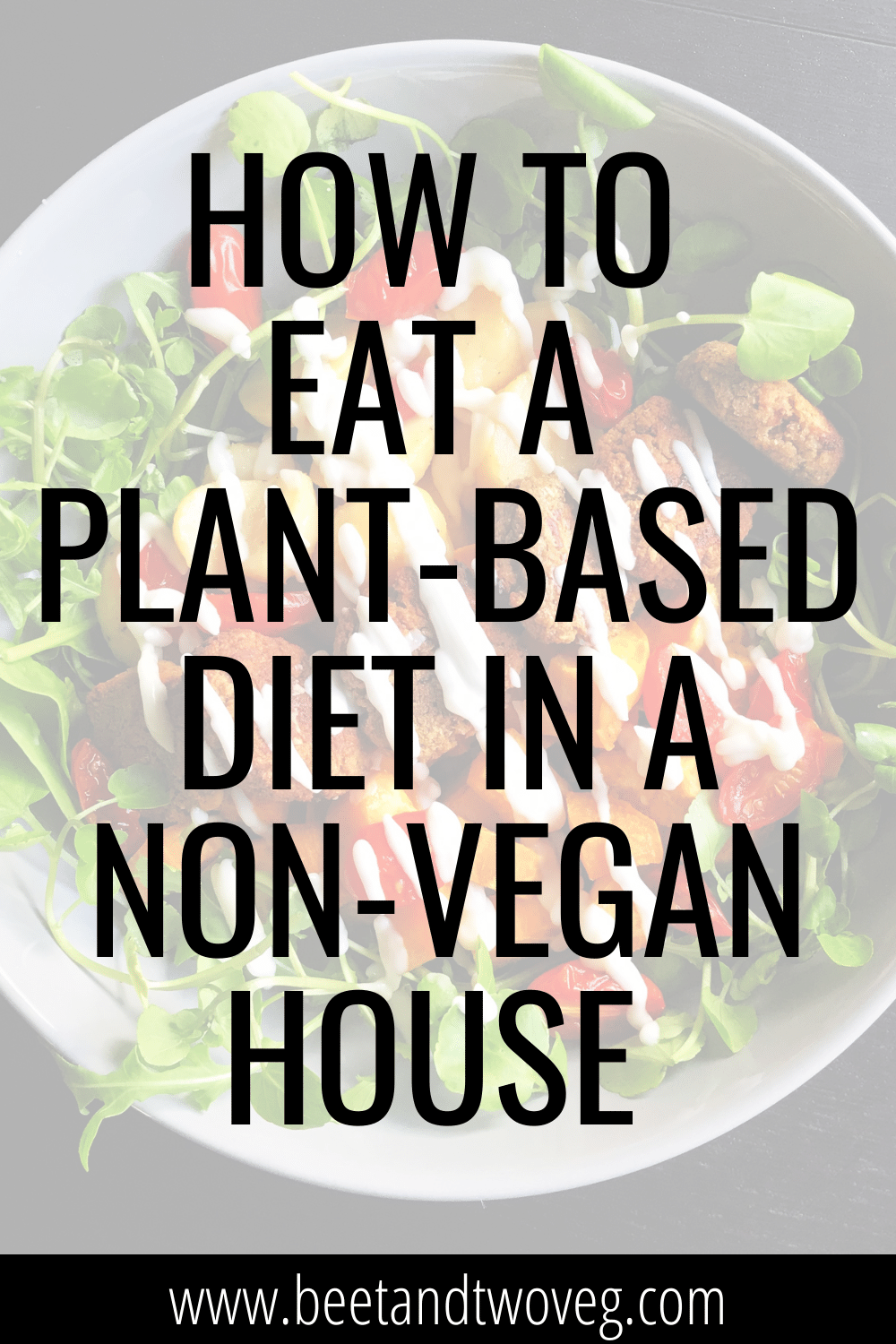 how to eat a plant-based diet in a non-vegan house
